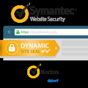 Symantec Secure Site OV SSL Certificate