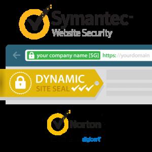 Symantec Secure Site EV SSL Certificate